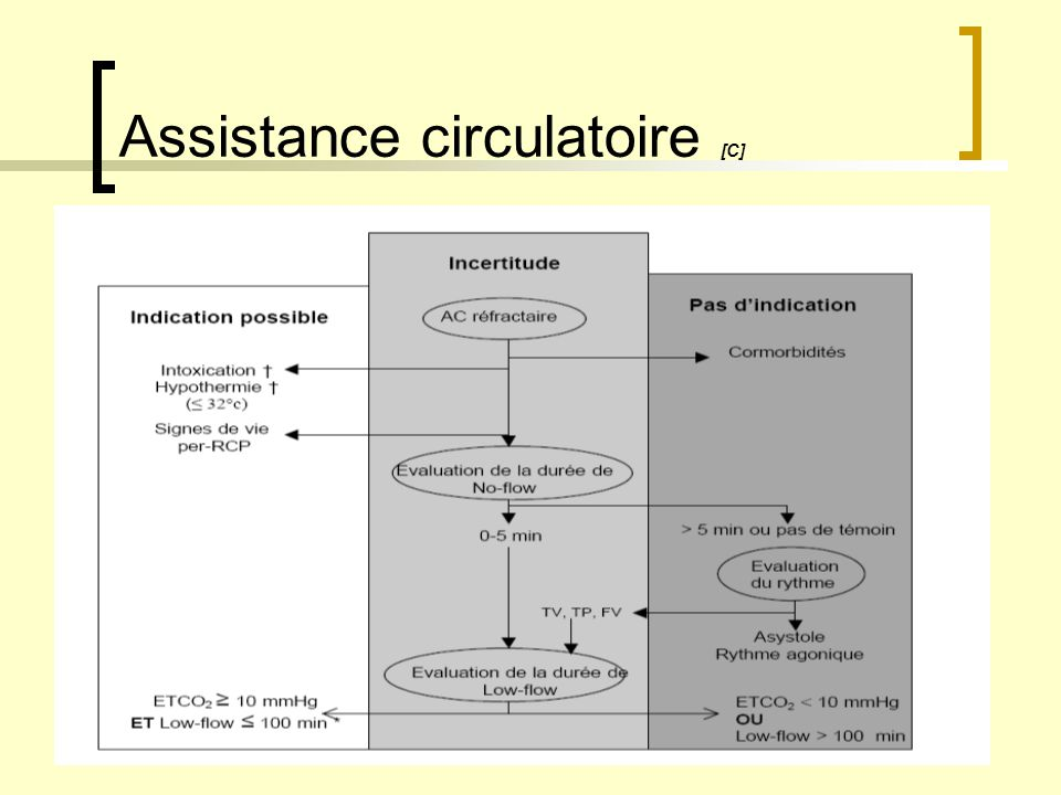 Assistance circulatoire [C]